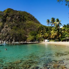 Se lancer dans le tourisme vert en Guadeloupe