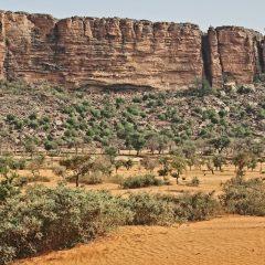 Un clin d'œil sur les merveilles du Mali