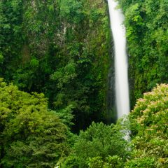 Le meilleur du Costa Rica en un clin d'œil