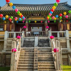 La Corée : Gros plan sur le pays du matin calme