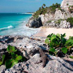 Top 5 des endroits à ne pas manquer au Mexique