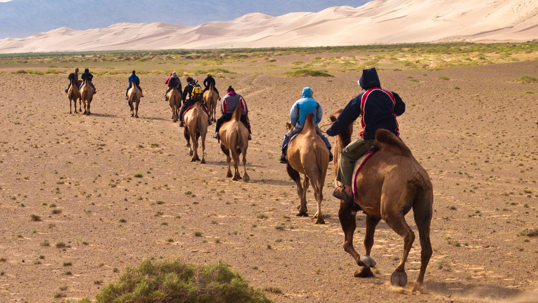 desert de gobi mongolie
