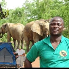 Votre Safari en Afrique de l'Ouest :