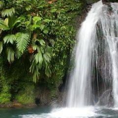 Découvrez les merveilles de l'île de la Guadeloupe