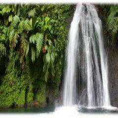 Découvrir les cascades de la Guadeloupe