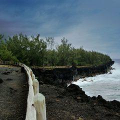 Plongée à la Réunion: 9 spots à découvrir absolument!