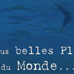 LA DOUCEUR BALINAISE MARIEE AUX PLUS BELLES PLONGEES  DE L'ÎLE, L'ASSURANCE D'UN EMERVEILLEMENT QUOTIDIEN