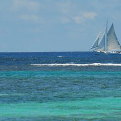 Les Tops 3 des plus beaux endroits en Martinique