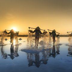 Circuit à la plage de Ninh Chu