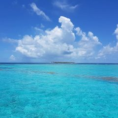 5 bonnes raisons de visiter les Grenadines en catamaran