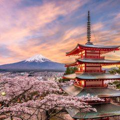 5 bonnes raisons pour faire un voyage au japon